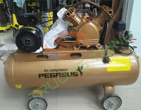 Pegasus TM-V-0.25/8 (3HP - 220V)